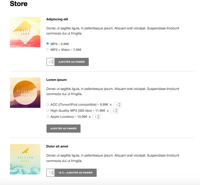 Site web pour musicien, groupe - e-boutique